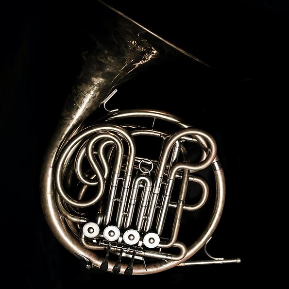 jonathan williams horn player