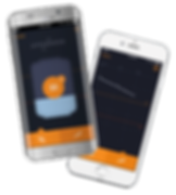 Nee-Vo_unbranded_phones_SP.png