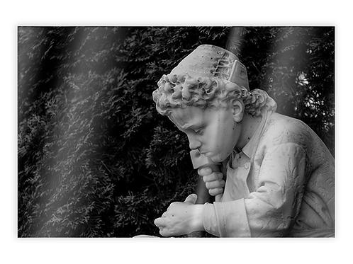 Fuller Gardens Greeting Card #4