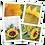 Thumbnail: Sunflower Greeting Card Quartet