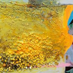 Imbedded Series, Yellow Sara, 2014
