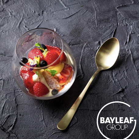 Bayleaf launches the first issue of their new quarterly, digital e-magazine!
