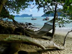 Kho Phi Phi3