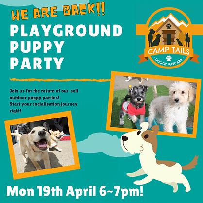 Playground Puppy Party