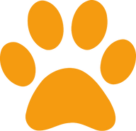 paw%20orange_edited.png