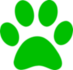 green-paw-print-hi.png
