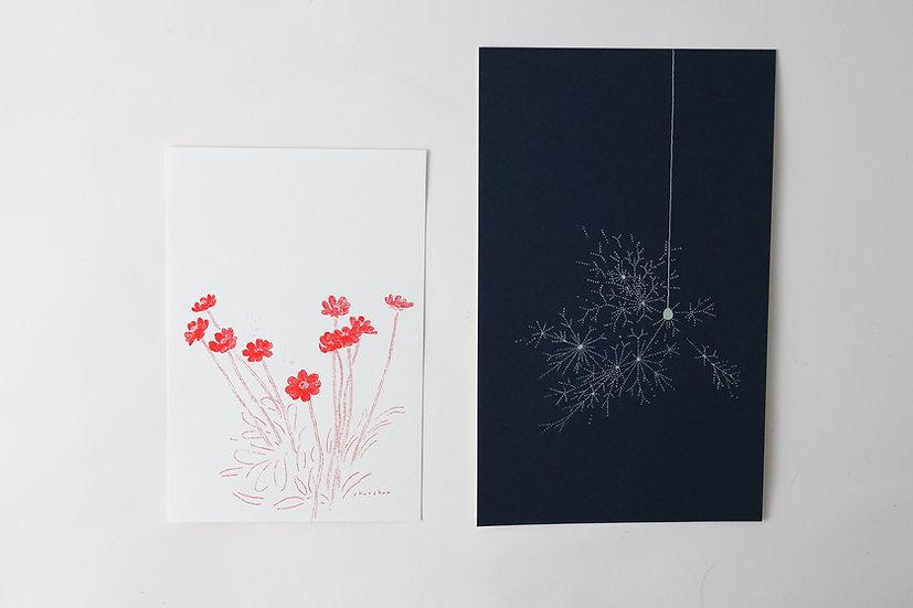 【しゅんしゅん】ポストカード「コスモス」/「線香花火」