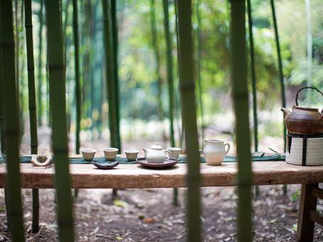 水無月・京都「看月亭」にて茶遊記一行が繰り広げる茶遊び