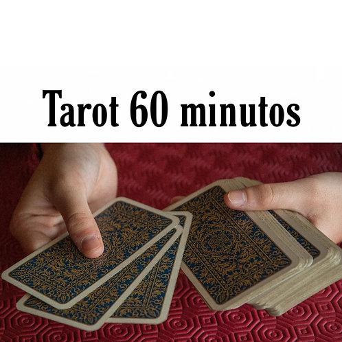 Lectura de 60 minutos