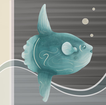 sunfish(print).jpg