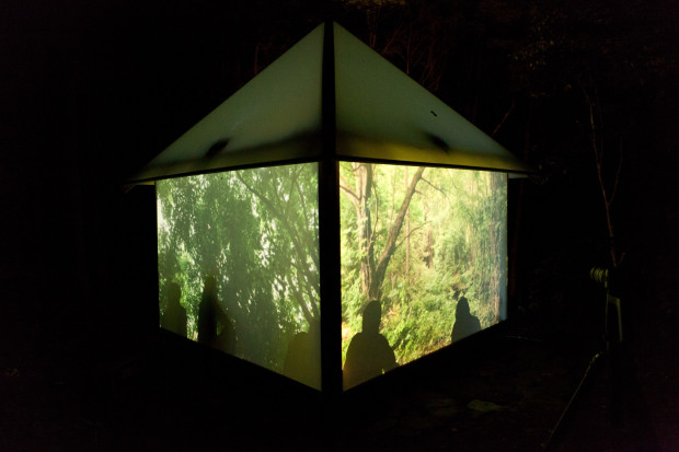 Forest Projections, Eco_Hack 2014
