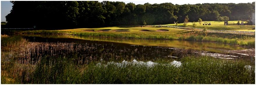 Whitetail 4.wetland
