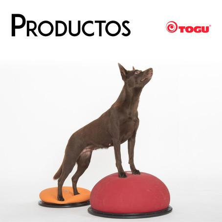 Fisioterapia Veterinaria: Togu te ofrece las mejores soluciones