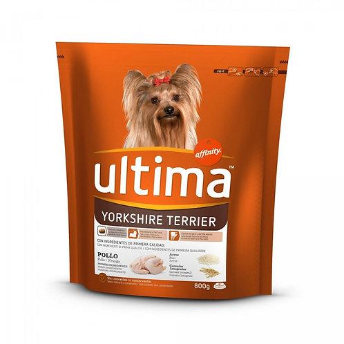 ULTIMA DOG Mini Yorkshire Croccantini Gatto Gr800