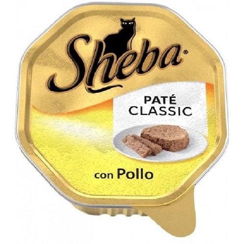 SHEBA Patè Pollo GR 85 per Gatto