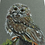 Thumbnail: Wise Owl Pastel Prints