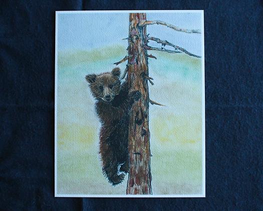 Climbing Bear Pastel Prints