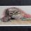 Thumbnail: Silly Monkey Pastel Prints