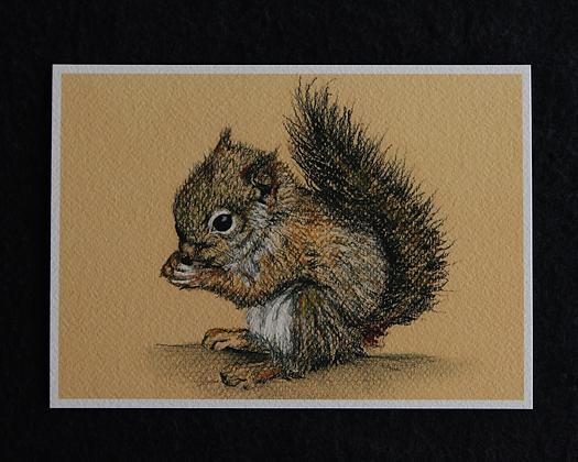 Squirrel Pastel Prints