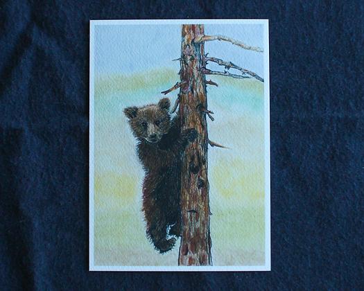 Climbing Bear Pastel Print