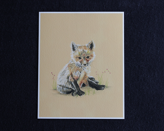 Sweet Fox Pastel Prints