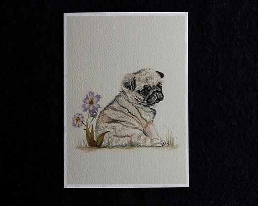 Pug Love Pastel Prints