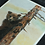 Thumbnail: Climbing Bear Pastel Prints
