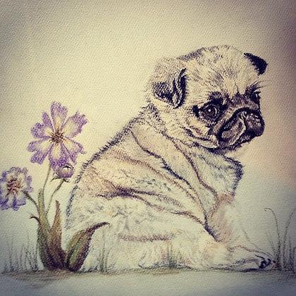 Pug Love Original