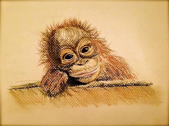 Thoughtful Monkey Original