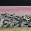 Thumbnail: Koalas at Sunset Watercolor Prints