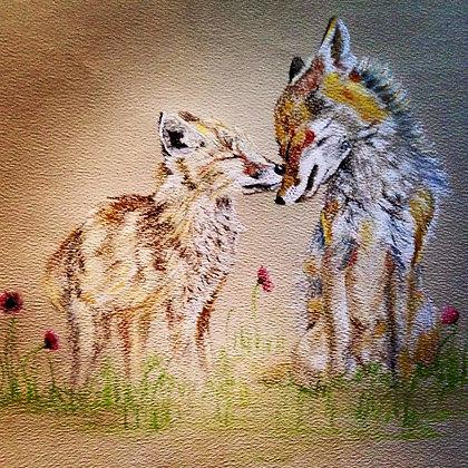 Fox Affection Original