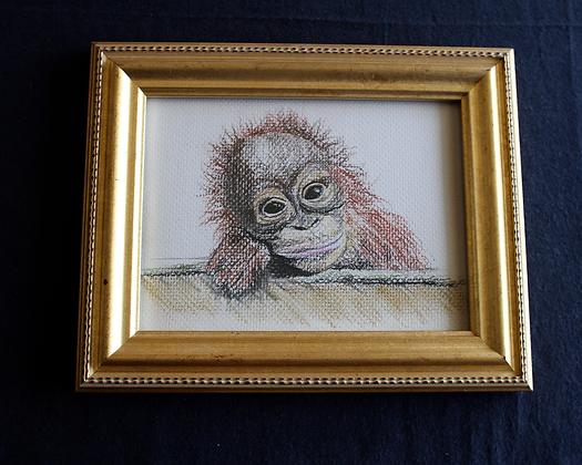 Silly Monkey Original in Frame