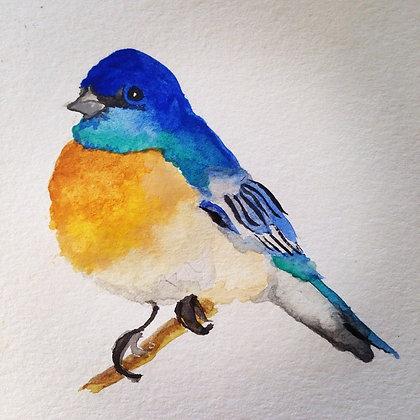 Blue Bird Original