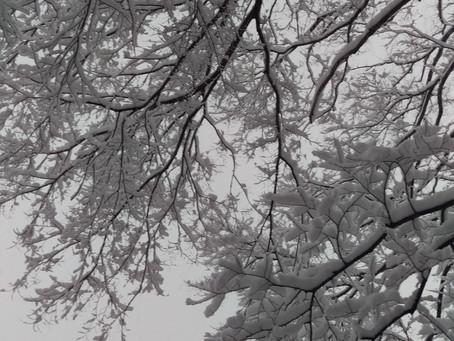 冬の綿麻布