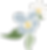 flower favicon 4.png