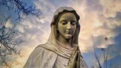 Jacareí, 19 de Novembro de 2017 - Mensagem de Nossa Senhora