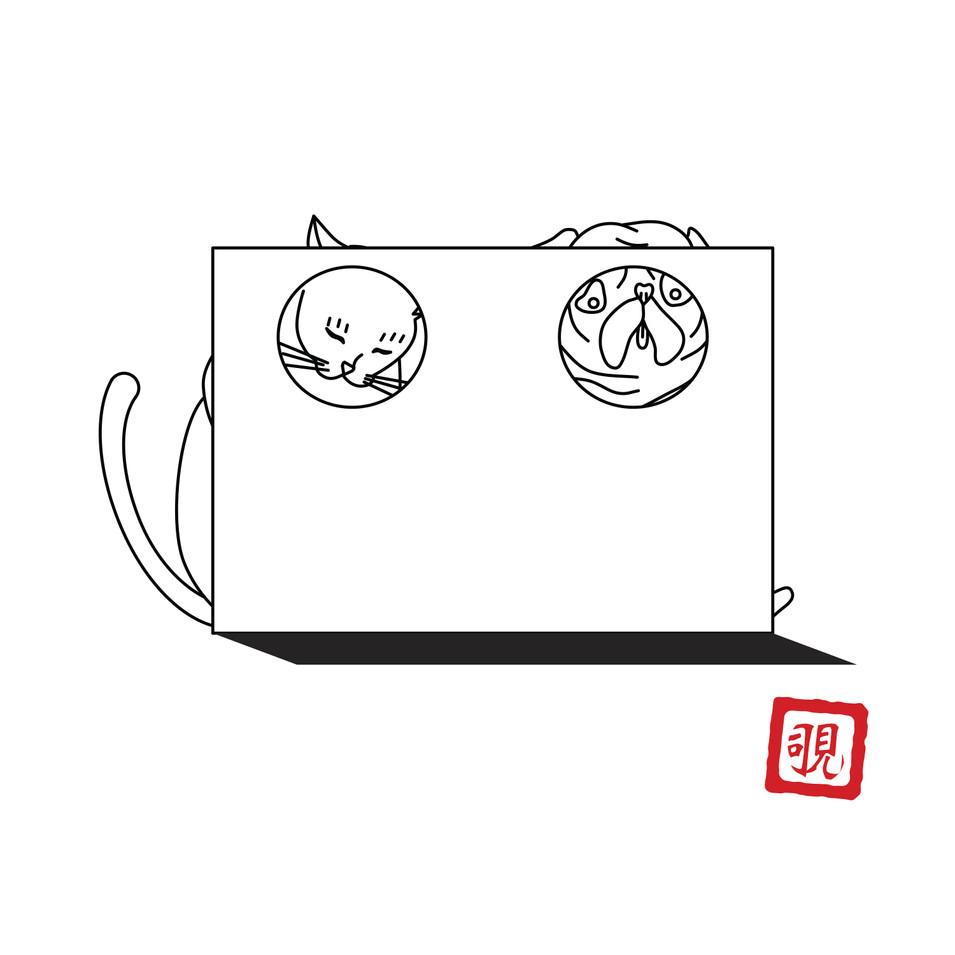 NEKO series -覗-