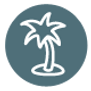 Palm Tree Icon - Teal