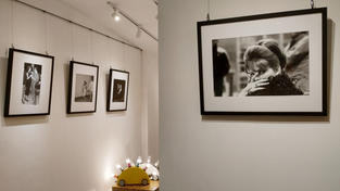 Novalis Contemporary Art Design Gallery