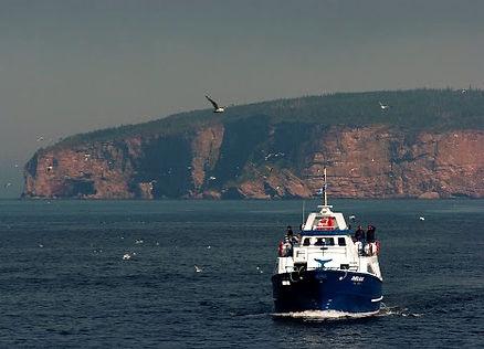 Campng La Seigneurie Croisière l'Île Bonaventure