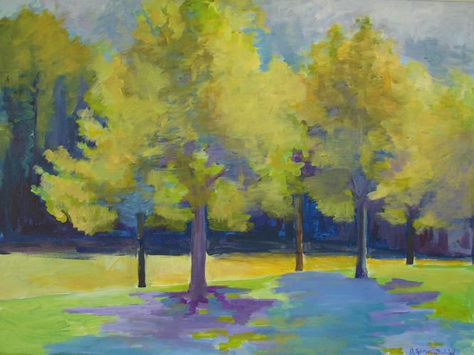 Trees at Allardale Park 36x30
