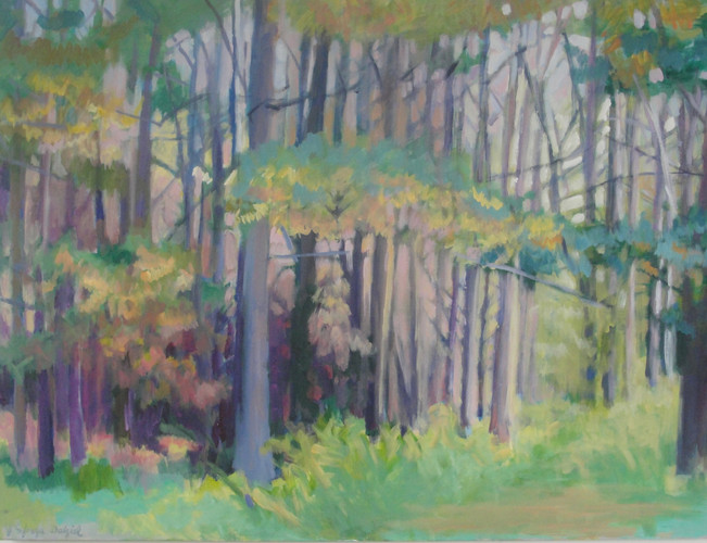 Pine Woods 40x30