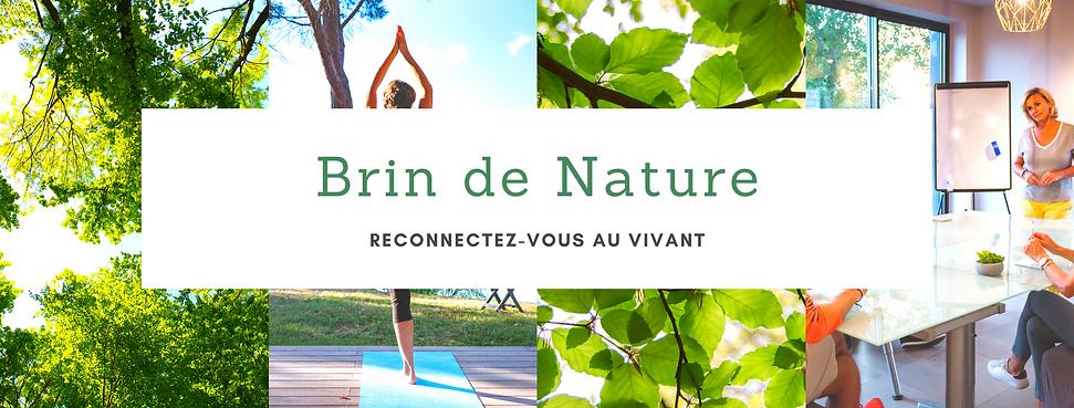 bandeau Brin de Nature.png