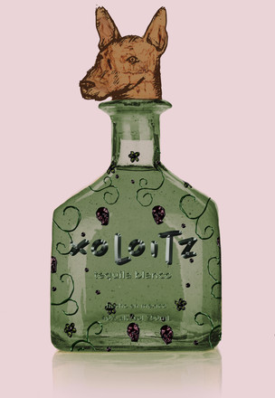 tequila-bottle3.jpg