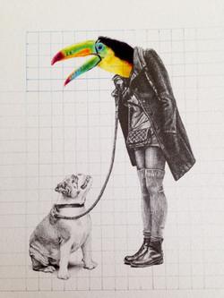 Tucan paseando a Perro