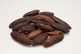 Dried Tonka I.jpg