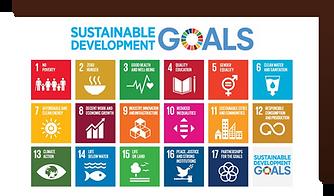 SDG (English).png