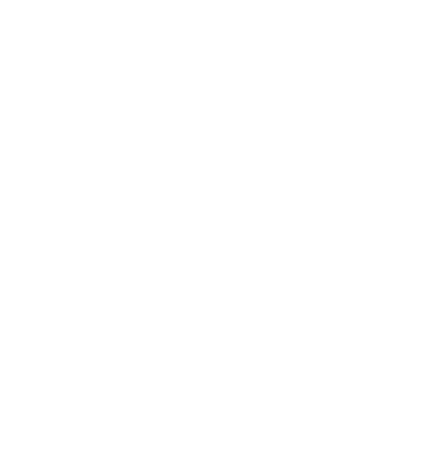 AVCiT-Icon-V.png