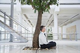 Meditatie voor bedrijven