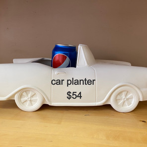car%20planter_edited.jpg